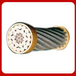 Aluminium Conductors Steel Reinforced (ACSR)